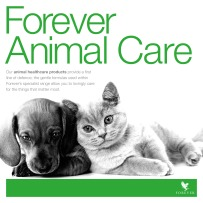Product_adverts_animal_care_5_AW_V1_SOCIAL_MEDIA