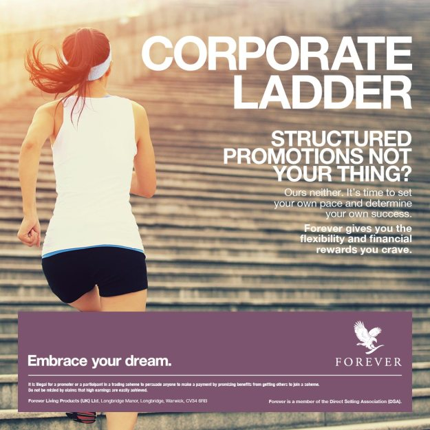 FLI_Corp_Ladder_Social_media_1200px-steps